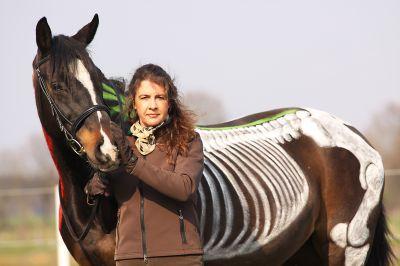 Anhand der aufgemalten Knochen und Muskeln erklärt Karin Kattwinkel den Pferdekörper