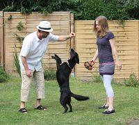 Das richtige Bio-Tierfutter für Hund, Katze, Echse, Vogel und Fisch finden Tierfreunde auf COSS-MOSS schnell, einfach und sicher