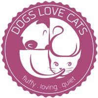 dogslovecats.com