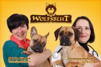 Tierarztsprechstunde bei Wolfsblut und Wildcat