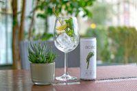 acáo - Der vegane Energy-Drink mit Bio-Siegel