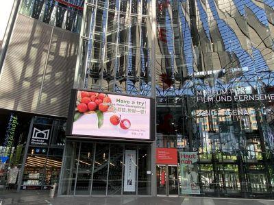 Litschis aus Guangdong werden in Berlin, Deutschland gezeigt