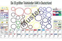 Die 30 größten Teilehändler (IAM) in Deutschland