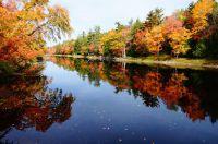 7 Mile Lake im Herbst – atemberaubende Seegrundstücke in Kanada