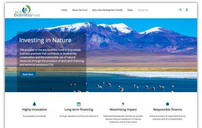 Website eco.business Fund