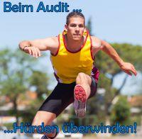 Durchführung von internen Audits