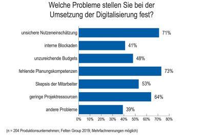 Welche Probleme stellen Sie bei der Umsetzung der Digitalisierung fest?