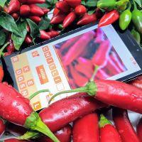 unblur.app - scharfer Rätselspaß in 18 Sprachen