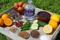 LAW Gin derGin aus Ibiza