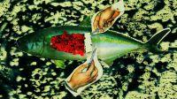 Artport_Good Food COP23 Bonn: Ein interdisziplinäres Kunstprogramm zur Klimakonferenz mit Tino Sehgal