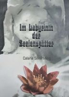 Im Labyrinth der Seelensplitter - Ausgewählte Sammlung moderner Gedichte