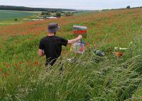Kunstausstellung des Volkacher Freilichtmalers Björn Wirtz zeigt Impressionen der Region