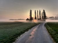 """""""Early Morning"""""""