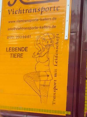 Werberat rügt Firma für Tiertransporte wegen sexistischer Werbung