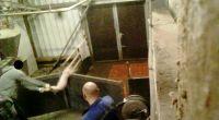 Erneut unglaubliche Tierquälerei in niedersächsischer Schweinemast aufgedeckt