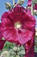 """""""Voin"""" von Steffi Krumbiegel"""
