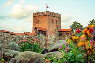 Burg von Medininkai