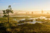 Soomaa Nationalpark_Credit-Sven Zacek