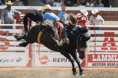 Rodeo bei der Calgary Stampede, Alberta, Kanada, www.destination-office.com (c)Calgary Stampede