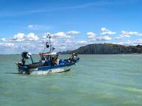 Fotoreise mit dem Profifotografen Joachim Rieger an die Alabasterküste in der Normandie