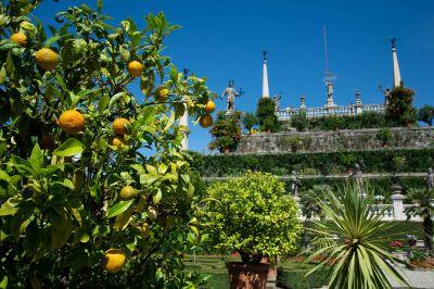 Isola Bella, Lago Maggiore, Borromeo Gärten