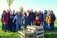 2000 Narzissenzwiebeln pflanzten Bürger und LAGA-Team für die Besucher der Landesgartenschau Zülpich 2014 ein.