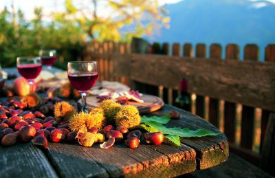 Törggelen in Südtirol – Frieder Blickle – Mgm