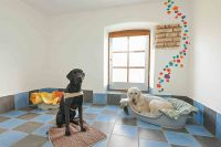 Hundepension Passau, Hundepension Pfarrkirchen, Hundepension Eggenfelden, Hundepension München, Hundepension Altötting, Hundepensi