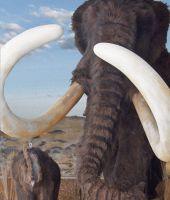 Ein Riesenmammut mit seinem Jungtier