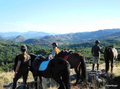 Zu Pferd im Peneda Geres Nationalpark - Reitkurs für Erwachsene mit Perlenfaenger