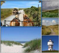 www.Typisch-Nordsee.de alles über die Nordsee