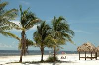 Sehenswert! Dry Tortugas National Park!