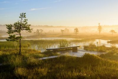 Soomaa National Park. Bildnachweis: Sven Zacek