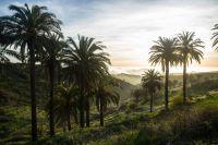 Sonnenuntergang in Las Hayas, Valle Gran Rey. Bildnachweis: Área de Turismo del Cabildo Insular de La Gomera