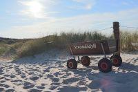 Vatertag mit Bollerwagen am Strand von St. Peter Ording