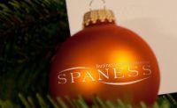 Mit www.spaness.de entspannt auf Weihnachten warten