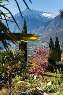 Den Herbst in Südtirol zum Vorteilspreis genießen