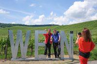 Weinherbst in der Neckar-Zaber Region