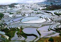 Reisterrassen Yunnan