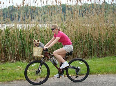 Bike-Domains: Millionen sind vom Radsport fasziniert - daher werden die Bike-Domains ein Erfolg