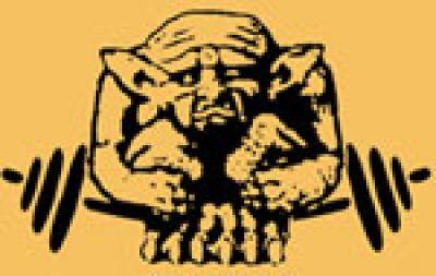 Bodybuilding, Fitness und Sport