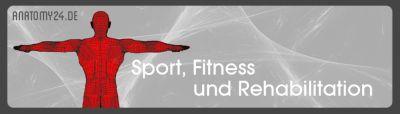 Anatomy24 Fitnessgeräte