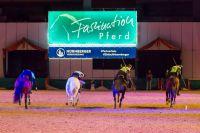 Tentpegging Germany die Deutsche Nationalmannschaft Waffenreiten bei den TOP GALA-Shows der Faszination Pferd
