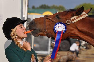 Bei Pferderennen winkt dem Erfolgreichen ein Gewinn...