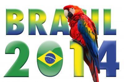 Fußball-Weltmeisterschaft 2014: Ein fröhliches Fest der Völkerverständigung