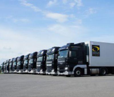 Transics stattete kürzlich die Flotte von Honold & Hirschle, einem deutschen Experten für Lebensmitteltransporte, mit Transics' Bo