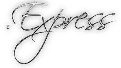 Google bevorzugt Express-Domains bei einschlägigen Anfragen