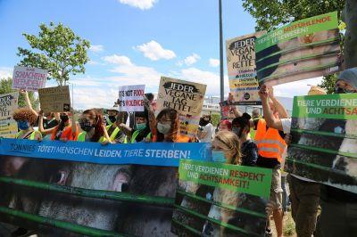 Tierrechtler*innen & Polizei halten Tiertransporter am Tönnies Schlachthof in Weißenfels (Sachsen-Anhalt) an