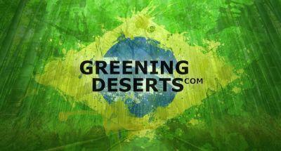 Greening Deserts Trillion Trees Initiative Basilien