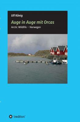 """""""Auge in Auge mit Orcas"""" von Ulf König"""